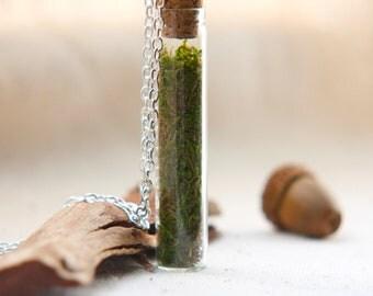 vial necklace botanical preserved specimen corked sage green moss. natural nature. tree woods emerald