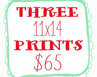 Any 3 11x14 prints for 65 dollars