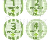 Monthly Baby Monthly Milestone Sticker 12 Frog Baby Monthly  Stickers  Boy