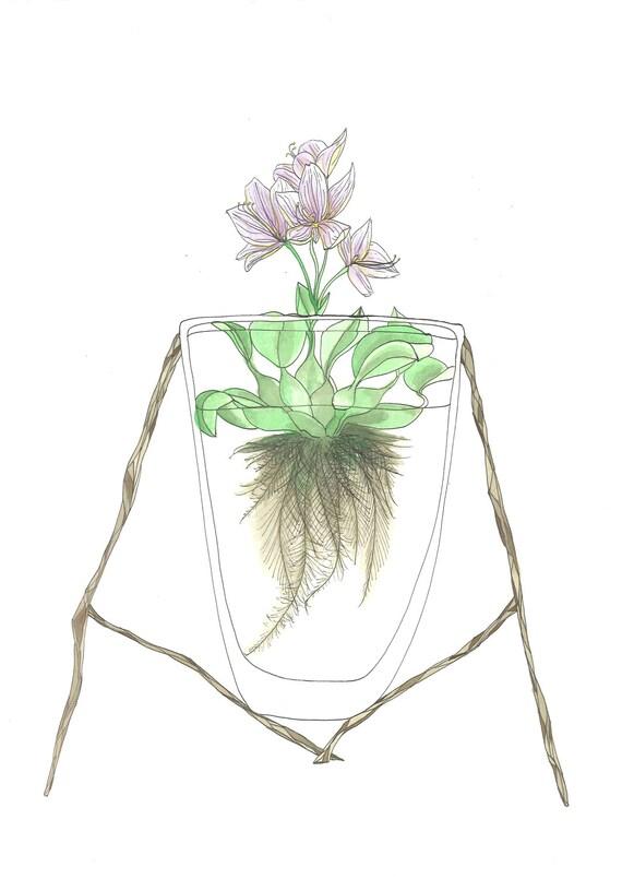 June 3, 2012 (Water Garden) - original ink and watercolor drawing