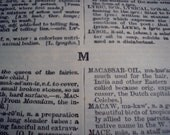 Letter M - 1908 American dictionary of the English language - Daniel Lyons Collier - 23 Sheets