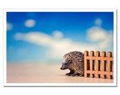 Nursery Decor, Life Like Porcupine Toy Photography, Kids Room Still Life Photography, Porcupine 8x12 back to school circus