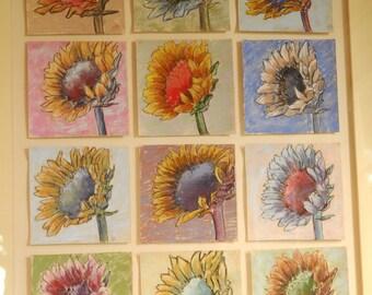 Sunflower Study 12