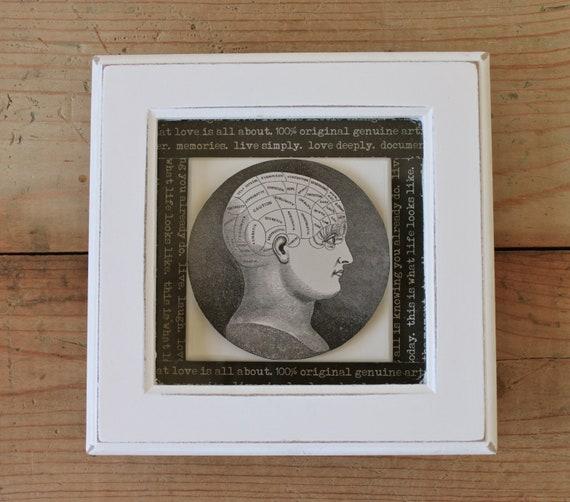 Steampunk Phrenology Anatomy Cranium Head Framed Picture