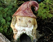 Gnome Toad House