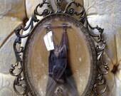 RESERVED FOR JSCHAEFER89 sleeping taxidermy bat in vintage ornate frame