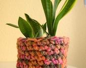50%  Plant pot cozy/ warmer/ cover