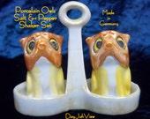 German Porcelain Owls Salt and Pepper Shakers in Holder - Rare Porcelain Caddy Set - Food Seasoning Chef Gift - Vintage Home Kitchen Decor