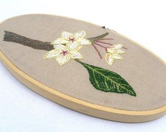 Plumeria  flower hand embroidery wall art