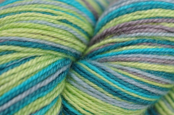 Self Striping Sock Yarn 80/20 BFL Nylon - New Crazy Stripes Colorway - What a Jewel