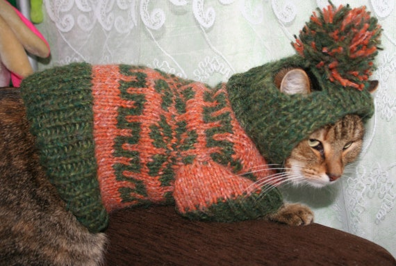 FREE SHIPPING Knit Cat/Dog Hooded Sweater by anastasijagogina