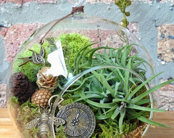 Steampunk Air Plant Terrarium - A Perfect Birthday or Mothers Day Day Gift