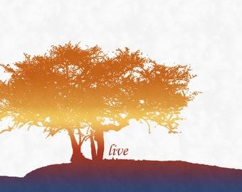 "SALE Trees ""Live"" Art Print (11x14)"
