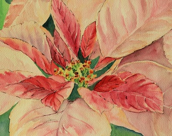 Christmas Pink Pointsettia - blank cards - Pack of 3
