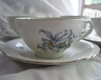 Set of 6 Lovely Europa Czechoslovakia Wildflower Pattern Tea Cups and Saucers
