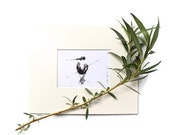 hummingbird ink painting // matted print