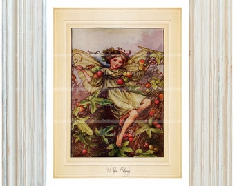 Flower Fairy Book Print Victorian Watercolor Fantasy Girl Bedroom Child Baby Nursery Garden Old Antique Wall Art White Bryony bf 310