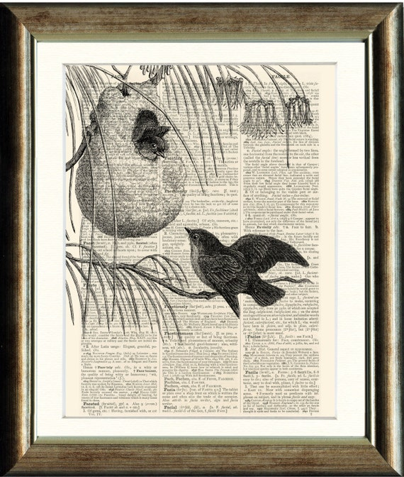 Swallows - vintage image printed on a page from a late 1800s Dictionary Buy 3 get 1 FREE