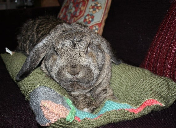 Bunny Hugger side by side bunny bed for a large to medium sized rabbit