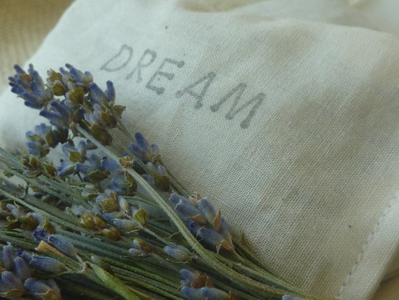 Herbal Scented Animal Eye Pillows : TWO Herbal DREAM Pillows... Pillow Scent or Linen Scent... An