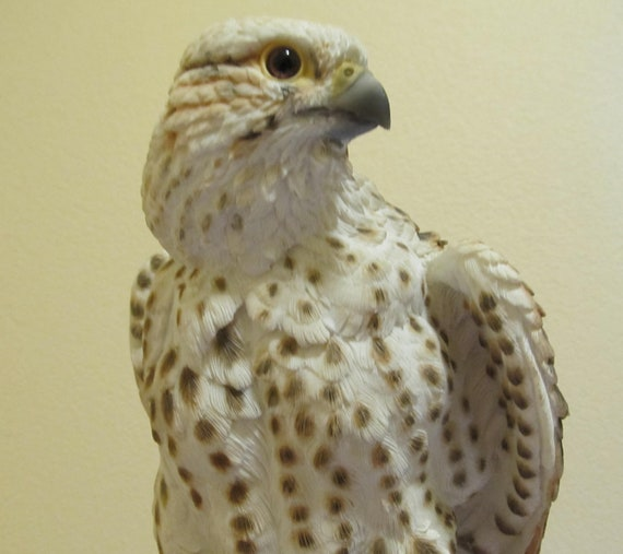 Woodland Falcon, Hawk, Collectible Falconry Statue, Wildlife Bird Art Vintage