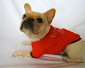 Texas Tech Dog T-shirt
