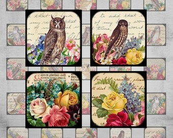 1x1 inch Digital Collage Sheet - Instant Download - Best for jewelry pendants, magnets, paper goods - OWLS