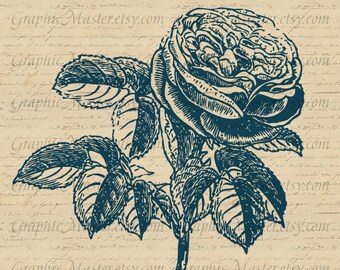 Victorian Rose Flower Vintage Image Digital Collage Sheet Iron On Transfers Clothing Fabrics Burlap Pillows Tea Towels Tote Bags a222