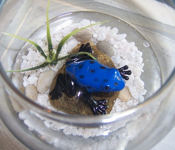 Frog Paperweight, Blue Dart Frog Paperweight, Tropical Frog Paperweight, Tropical Office Decor