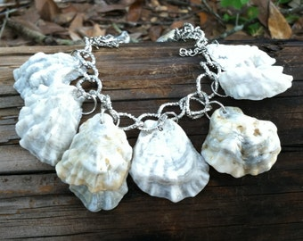 Kitten paw sea shell bracelet, natural shells,found on the gulf coast, unique, one of a kind.