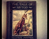 Beatrix Potter The Tale of Mr. Tod