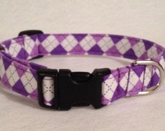 "3/4"" Buckle or Martingale- Purple Argyle"