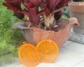 Spiderweb in Orange