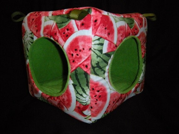Watermelon Cube/House Lined with Apple Green Fleece for Small Pets