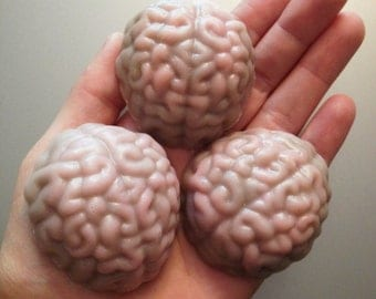 Twelve (12) Realistic Anatomy Brain Soaps in Buttercreme and Snickerdoodle fragrance by Lavish Handcrafted