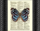 Dictionary Art Print, Mexican Blue Wing Butterfly Print, Blue Butterfly Art, Upcycled Dictionary Page
