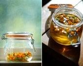 Sample of one teaspoon of Dried Organic Calendula Herb Flowers for Herbal Medicinal Tea PIF