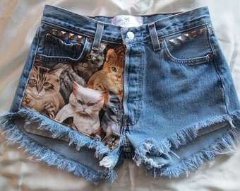 Kitten High waisted Denim Shorts