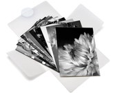 "Black and White Note Card Set - twenty 4x6"" photography prints"