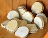 "6 WHITE BIRCH Wood Slices, Cookies, Blanks, 3"" Diameter, Flat Sided Pieces, Table Signs, Place Markers, DIY Craft Projects"