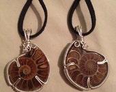 A pair of ammonite pendants