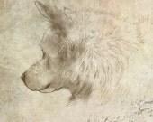 Shelter Dogs: Bolt - Art Print