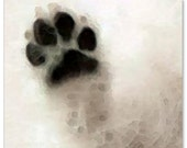 Dog Art PRINT From Painting Paw Dogs Paws Canine Animal Lover Cute Fun Fur Pads CANVAS Ready To Hang Artwork Collectible Black White Gift