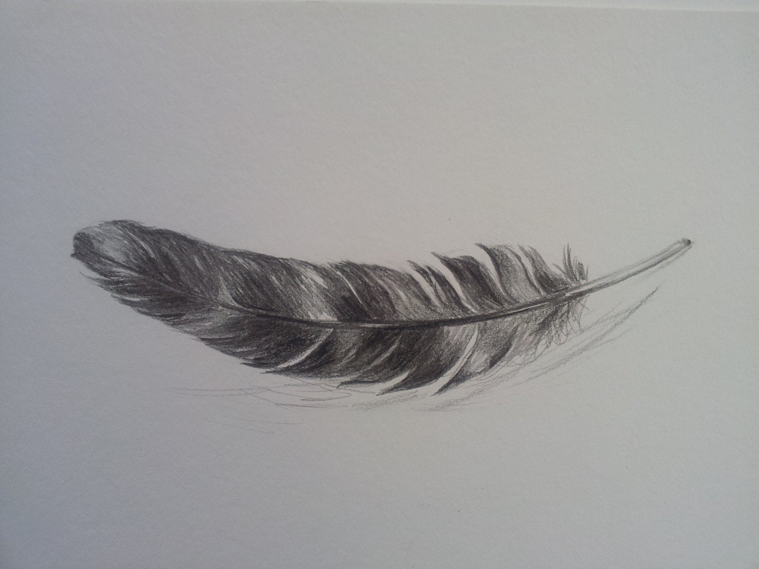 Like this item Eagle Feather Pencil Drawing