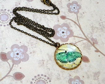 Blue Butterfly Necklace, Antique Brass, Bug Insect Simple Necklace