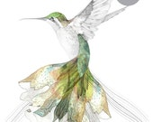 Hummingbird    A3 SIZE