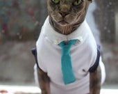 Cat shirt and tie/ Sphynx shirt