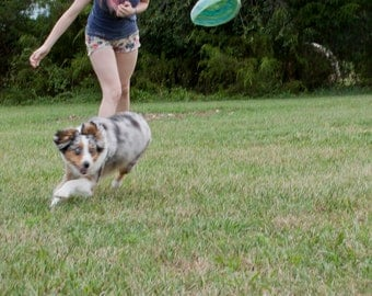 Soft, High Flying Frisbee