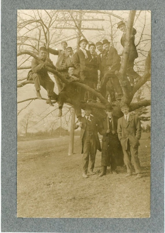 """Vintage Photo """"Tree Keepers"""", Photography, Paper Ephemera, Snapshot, Old Photo, Collectibles - 0064"""