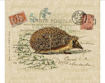 Hedgehog Paris Carte Postale Instant graphic Digital download image for paper Iron on fabric transfer burlap pillow decoupage tote  No. 609